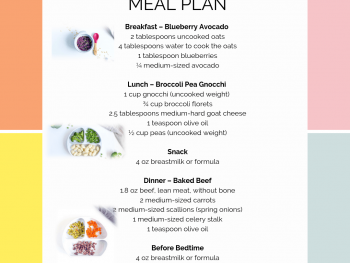 11 month old sample meal plan