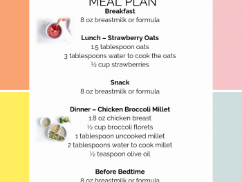 8 Month Old Meal Plan