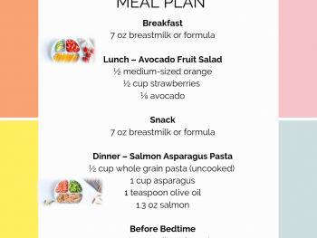 9 Month Old Meal Plan